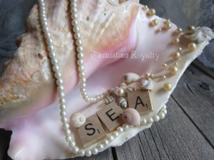 conch_shell_photo_holder_4