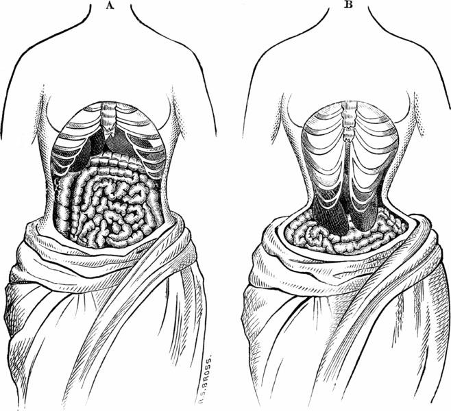 coco_corset2