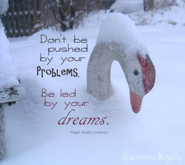 swan_snow