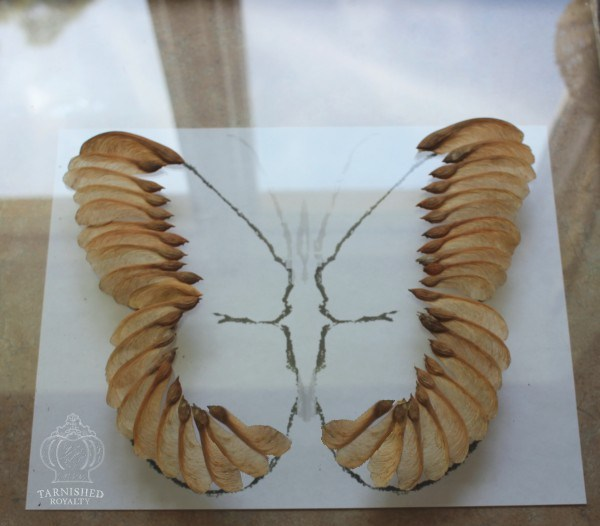 maple_seed_butterfly_art_step_4